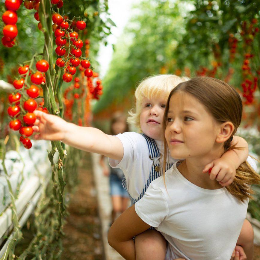 Deň detí na farme